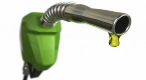 large_article_im2126_biofuel_US_market-300x165